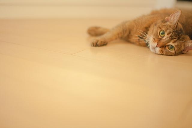 床暖房☆電気代は種類でどのくらい違う?最もコスパが良いのは?