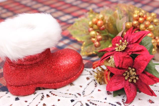 ポインセチアの赤の花言葉は?どうしてクリスマスに用いられるの?