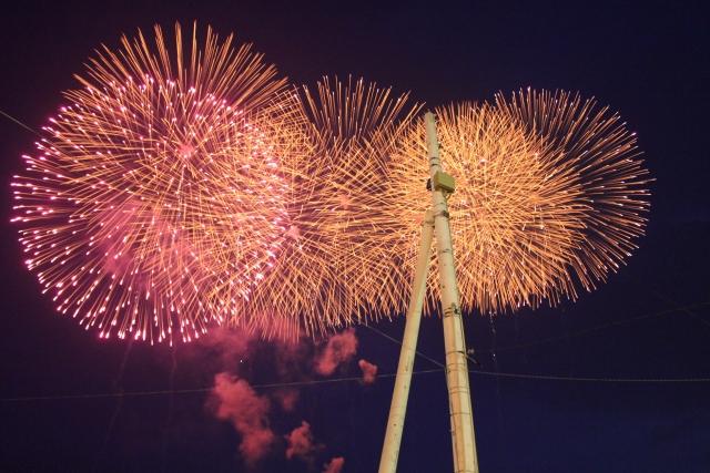 昭和記念公園の花火☆2015年の日程や見どころや穴場スポットは?
