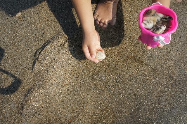 海の公園☆潮干狩りでアサリ以外のものは採れる?コツはある?